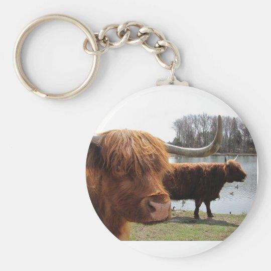 Scottish Highland Cattle ~ keychain
