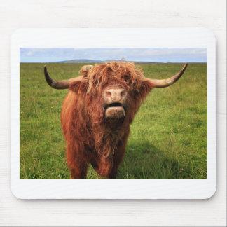 Scottish Highland Cattle - Scotland Mouse Pad