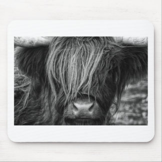 Scottish Highland Cattle - Scotland Mouse Pad