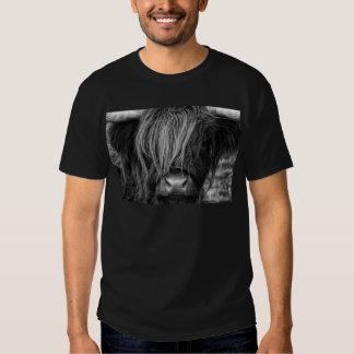 Scottish Highland Cattle - Scotland Shirt