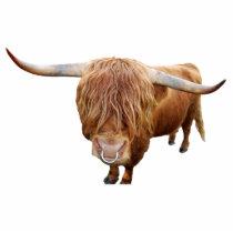 Scottish highland cattle statuette