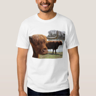 Scottish Highland Cattle ~ T T-shirt