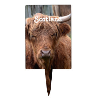 Scottish Highland Cow Cake Toppers
