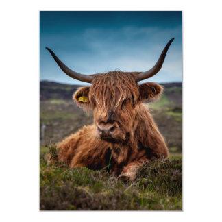 Scottish Highland Cow Longhorn Bull Rancher 5x7 Paper Invitation Card