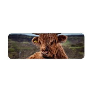 Scottish Highland Cow Longhorn Bull Rancher Custom Return Address Label