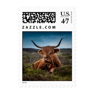 Scottish Highland Cow Longhorn Bull Rancher Postage