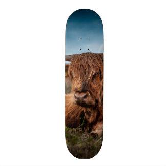 Scottish Highland Cow Longhorn Bull Rancher Skateboard Deck