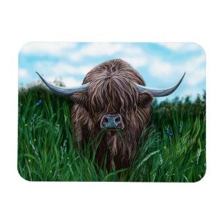 Scottish Highland Cow Painting Magnet