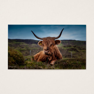 Scottish Highland Cow Rancher Business Cards