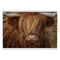 Scottish Highland Cow - Scotland Card