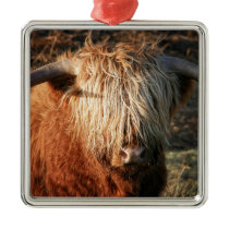 Scottish Highland Cow - Scotland Metal Ornament