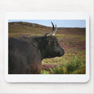 Scottish Highland Cow - Scotland Mouse Pad