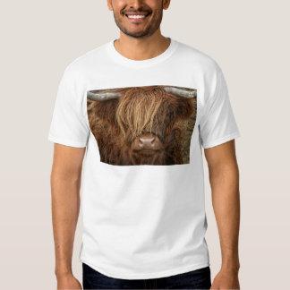 Scottish Highland Cow - Scotland T-shirt