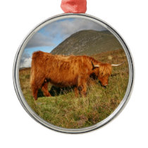 Scottish Highland Cows - Scotland Metal Ornament