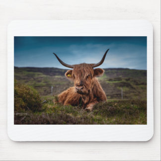Scottish Highland longhorns Rancher Mouse Pad