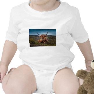 Scottish Highland longhorns Rancher Romper