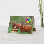 Scottish Highland Steer Party Birthday Card