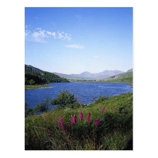 Scottish Loch Post Cards