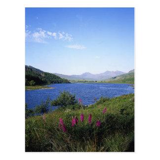 Scottish Loch Postcard