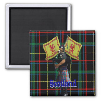 Scottish piper on tartan magnet