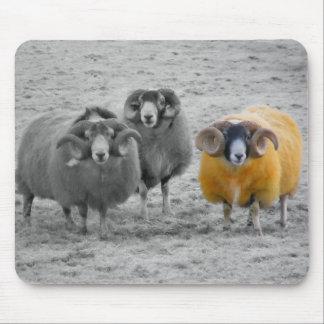 Scottish Rams Mouse Pad