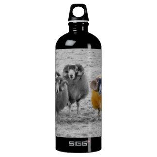 Scottish Rams SIGG Traveler 1.0L Water Bottle