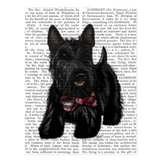 Scottish Terrier and Bow Postcard