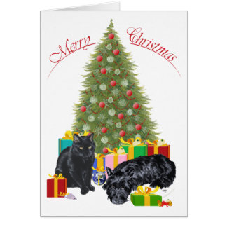 Scottish Terrier and Kitty Greeting Card