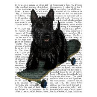Scottish Terrier and Skateboard Postcard