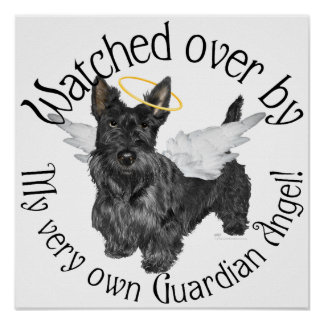 Scottish Terrier Angels Poster