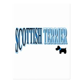 Scottish Terrier Blue/Black/White Postcard