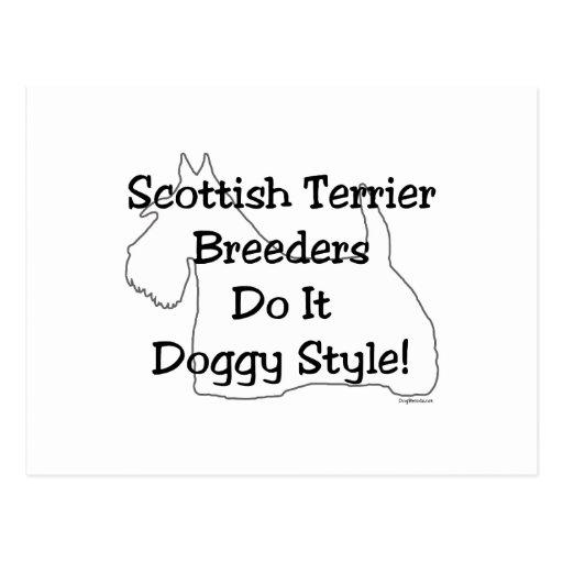 Scottish Terrier Breeders Postcard