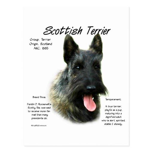 Scottish Terrier (brindle) History Design Postcards
