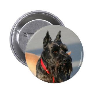 Scottish Terrier Button