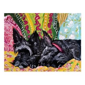 Scottish Terrier Cottage Postcard