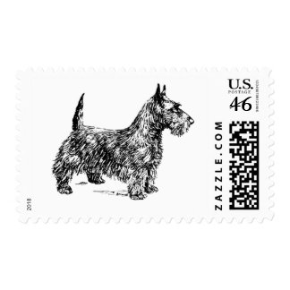 Scottish Terrier Dog Breed Black and White Drawing Postage Stamp