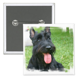 Scottish Terrier Dog Button