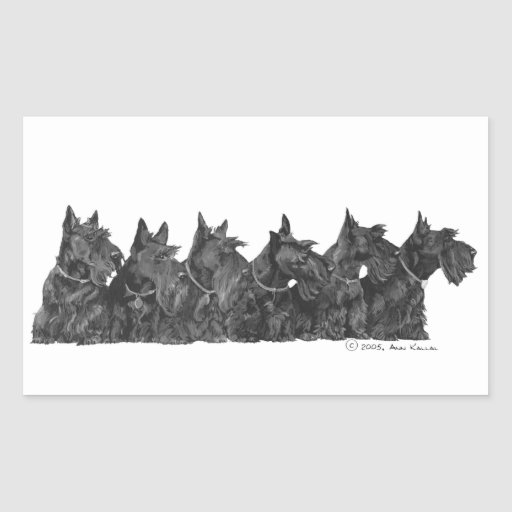 Scottish Terrier Gathering Rectangle Stickers