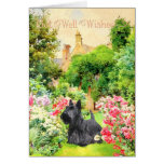 Scottish Terrier Get Well Wishes Card