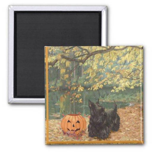 Scottish Terrier Halloween 2 Inch Square Magnet
