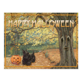 Scottish Terrier Halloween Postcard