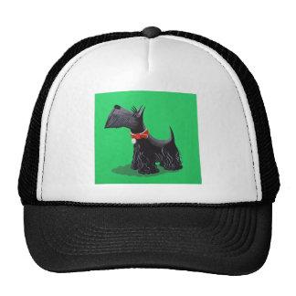 Scottish Terrier Hats