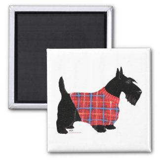 Scottish Terrier in a Sweater 2 Inch Square Magnet
