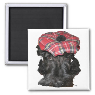 Scottish Terrier in a Tam-o-Shanter 2 Inch Square Magnet
