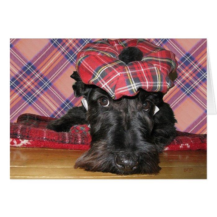 Scottish Terrier in a Tam-o-Shanter Card