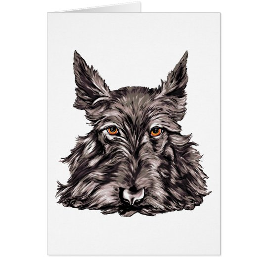Scottish Terrier in Black Card