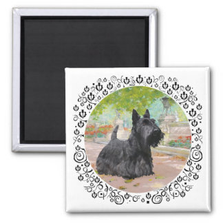 Scottish Terrier in Dappled Sunlight 2 Inch Square Magnet