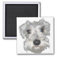 Scottish Terrier Magnet magnet