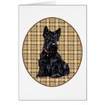 Scottish Terrier on Plaid Greeting Card
