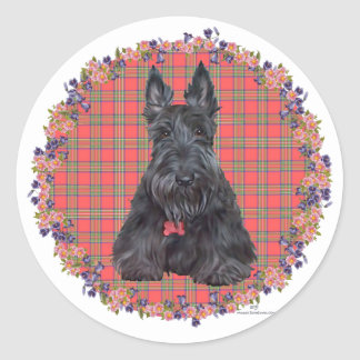 Scottish Terrier on Tartan Classic Round Sticker